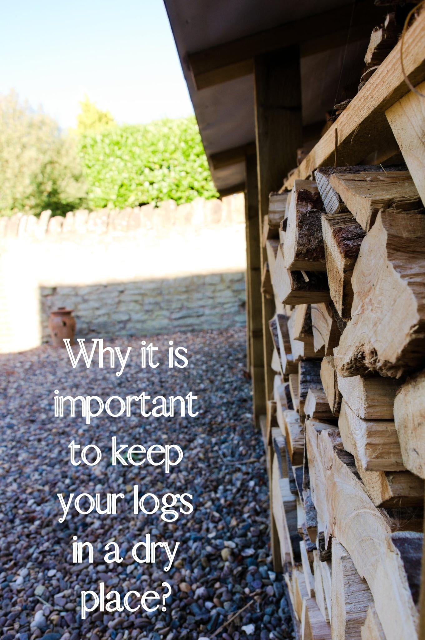 Why you need a Log Store: Everything You Need to Know